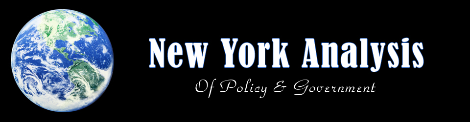 New York Analysis of Policy and Government